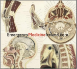 Emergency Medicine Ireland